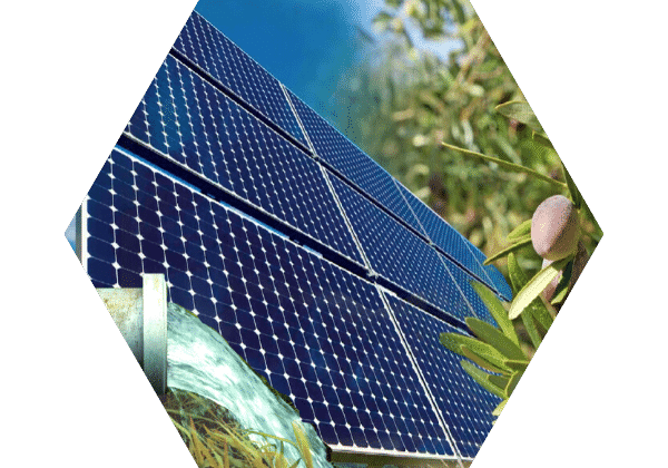 Le photovoltaïque pour l'agriculture
